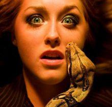Mơ bị rắn cắn là điềm báo gì, giải mã giấc mơ bị rắn cắn