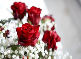Top cung hoàng đạo thoát kiếp FA tận hưởng Valentine 2019 ngọt ngào