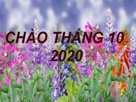 Tử vi tháng 10/2020 của 12 con giáp, Tý cần trọng, Dần tăng tiến